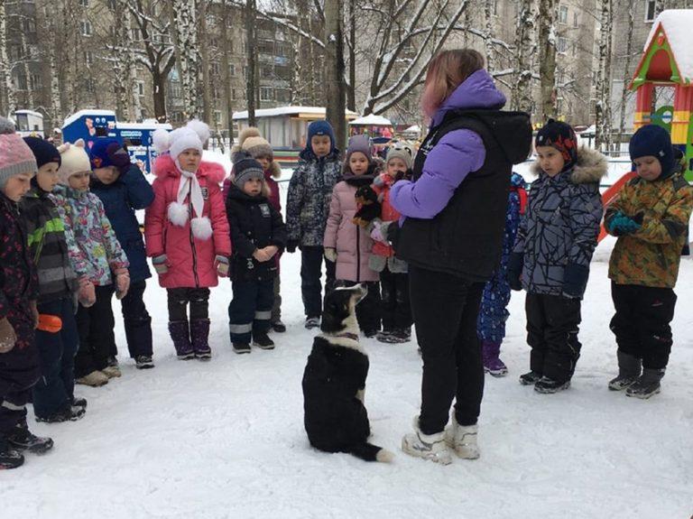 """""""Верность"""" центр реабилитации животных"""