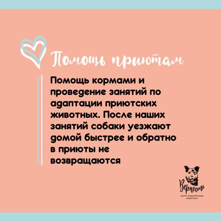"""Центр """"Верность"""""""