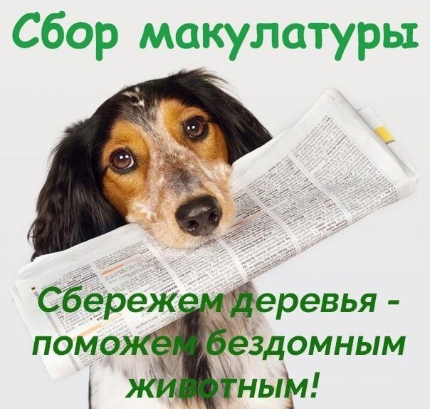 Верность Ярославль